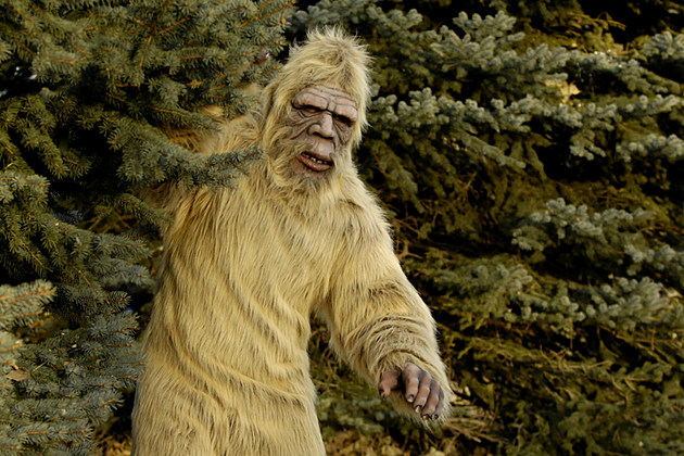 Sasquatch attacks Colorado Hunter